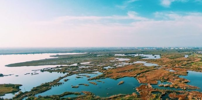 marshes and wetlands as nature-based solutions